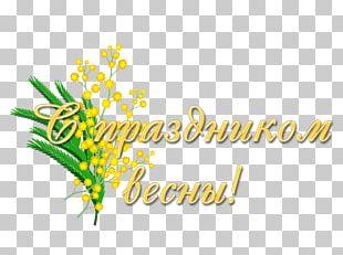 8 March Logo Studio Kvartal-95 Information PNG