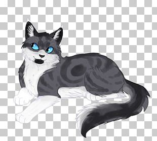 Cat Kitten Drawing Art Whiskers PNG