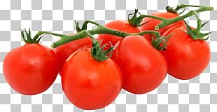 Tomato Pizza Organic Food Vegetarian Cuisine Vegetable PNG