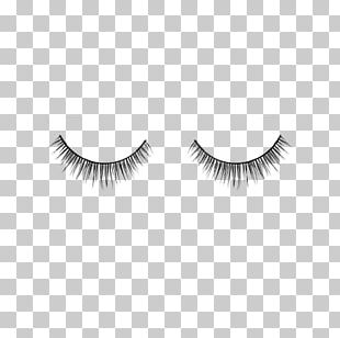 Eyelash Extensions Cosmetics Eyelash Curlers Eyebrow PNG