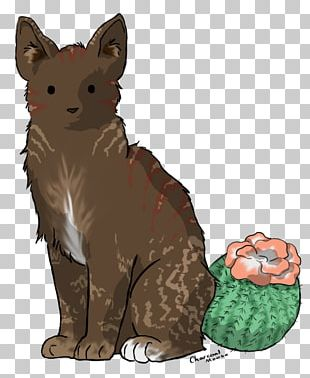 Whiskers Cactus Cat Red Fox PNG