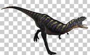 Carnivores: Dinosaur Hunter Velociraptor Tyrannosaurus Aucasaurus Spinosaurus PNG