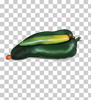 Serrano Pepper Bell Pepper Pasilla Chili Pepper PNG