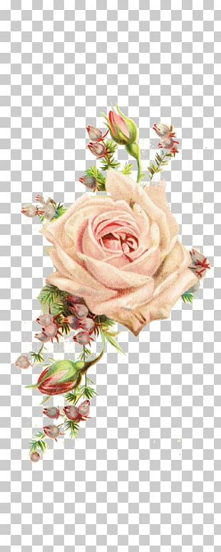 Paper Rose Antique Flower Vintage Clothing PNG