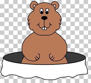 The Groundhog Groundhog Day PNG