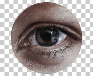 Eyelash Extensions Eye Shadow Close-up Artificial Hair Integrations PNG
