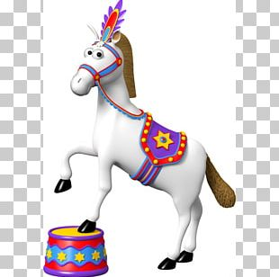 Horse Pony Circus Sticker Carpa PNG