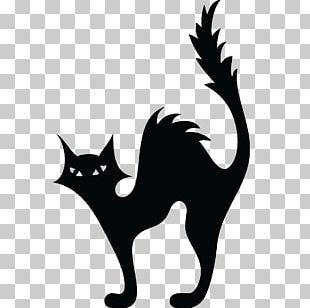 Cat Kitten Halloween Silhouette PNG
