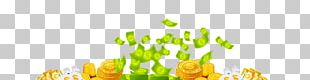 Money Prize Competition Game Award PNG