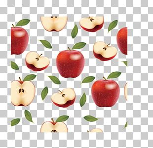 Apple Drawing Food Fruit Auglis PNG