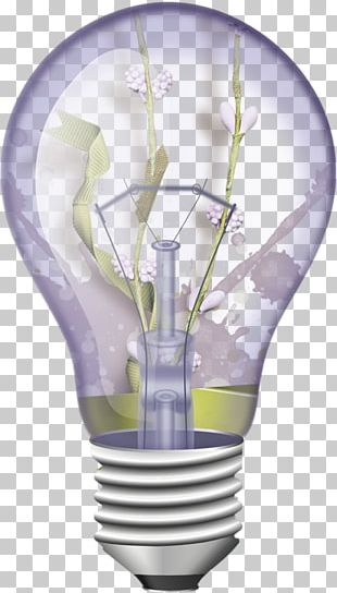 Incandescent Light Bulb Transparency And Translucency PNG