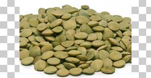 Le Puy Green Lentil Organic Food Dal Lentil Soup PNG