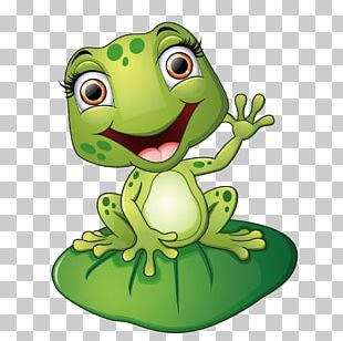 Frog Cartoon Illustration PNG