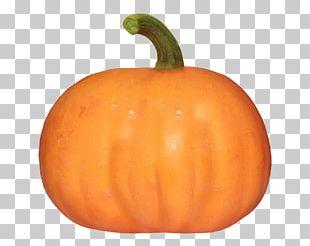 Cucurbita Pumpkin Gourd Winter Squash Vegetable PNG