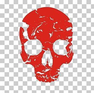 Red Skull Human Skeleton Bone PNG