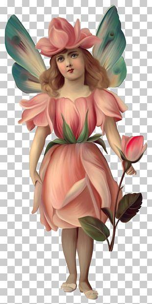 Cicely Mary Barker Victorian Era Fairy Angel Bokmxe4rke PNG