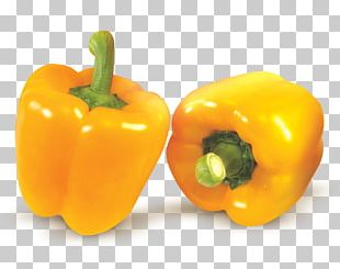 Habanero Yellow Pepper Bell Pepper Chili Pepper Paprika PNG