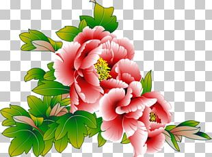 Flower Bouquet Color Garden Roses Wildflower PNG