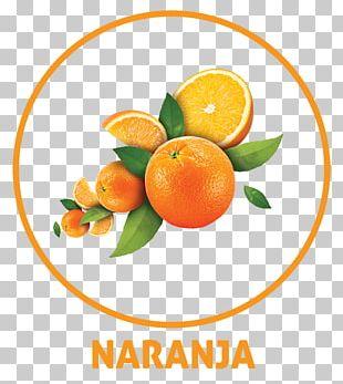 Tangerine Orange Drink Orange Juice PNG