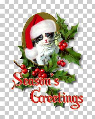 Santa Claus Christmas Ornament Mrs. Claus Business Cards InfoVía PNG
