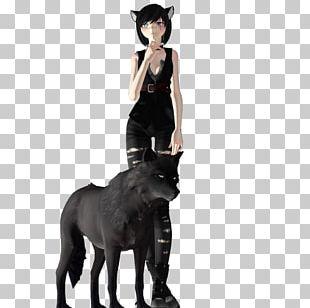 Mustang Dog Fur Freikörperkultur Canidae PNG