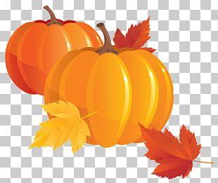 Autumn Pumpkin PNG
