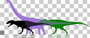 Giganotosaurus Argentinosaurus Dinosaur Size Tyrannosaurus Mapusaurus PNG