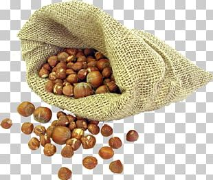 Hazelnut Vegetarian Cuisine Chocolate Peel PNG