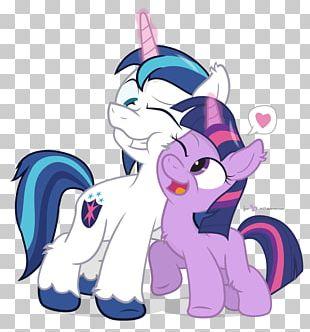 Pony Princess Cadance PNG