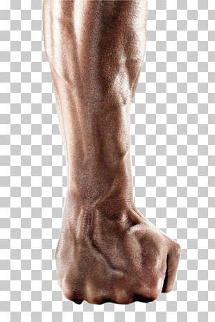 Arm Fist PNG