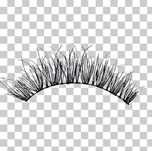 Eyelash Extensions Artificial Hair Integrations Mascara PNG