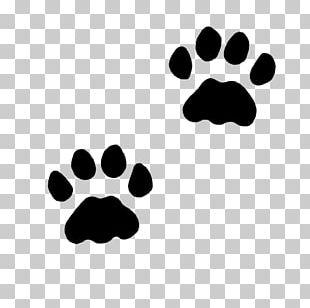 Cat Dog Paw Kitten PNG