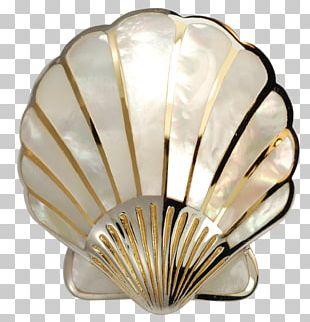 Seashell Pearl Nacre Scallop PNG