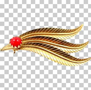 Clothing Accessories Feather Jewellery Gold Coral PNG