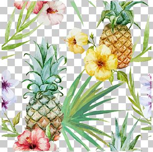 Cuisine Of Hawaii Pineapple PNG