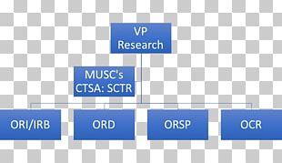 Organizational Chart Flat Organization Business Bunschoten PNG