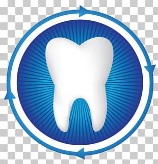 Dentistry Human Tooth Periodontology PNG