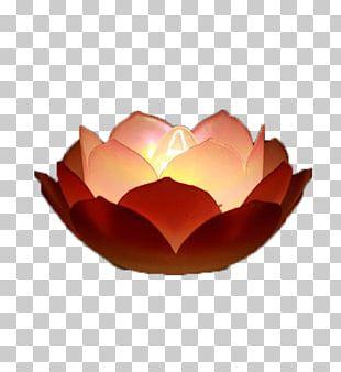 Light Lantern Festival Lantern Festival PNG