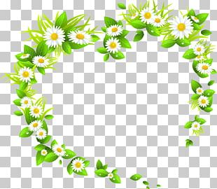 Flower Green Stock Photography PNG