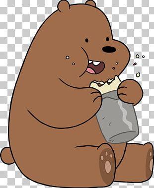 Polar Bear Brown Bear Grizzly Bear Giant Panda PNG