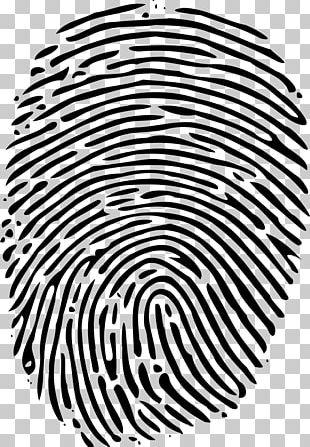 Fingerprint Human Resources Organization Book Management PNG