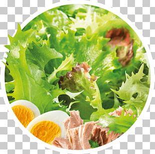 Caesar Salad Vegetarian Cuisine Romaine Lettuce Crudités Vinaigrette PNG