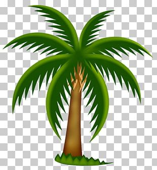 Palm Trees Date Palm PNG