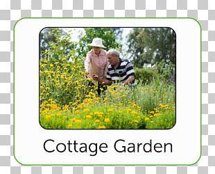 Bendigo Cottage Garden Botanical Garden Lawn PNG