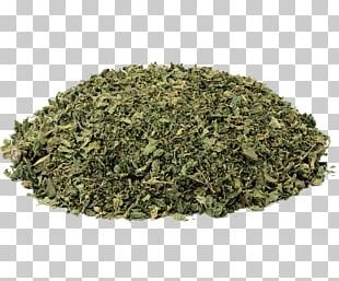 Green Tea Food Drying Herb Peppermint PNG