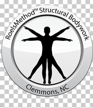 Vitruvian Man Physiology Art Human Body PNG