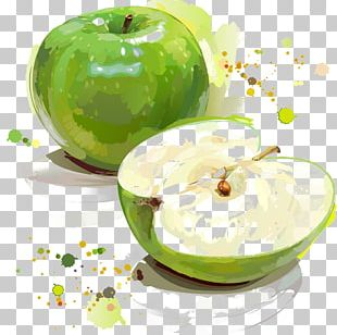 Apple Granny Smith Painting Illustration PNG