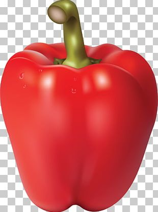Bell Pepper Chili Con Carne Chili Pepper PNG