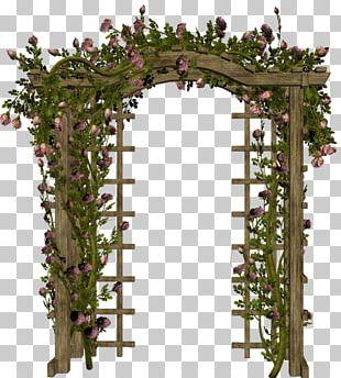 Flower Garden Roses Petal Floral Design Blog PNG