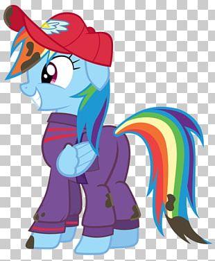 Pony Rainbow Dash Pinkie Pie Fan Art PNG